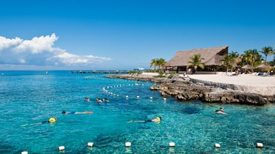 Snorkelers swim in front of a rocky shoreline with a large thatched hut and palm trees on it