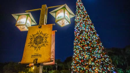A Christmas tree with lit up ornaments along with a festive holiday street lamp that holds a Disneys Animal Kingdom theme park banner