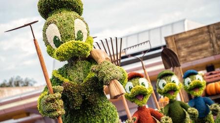 Arbustos artísticos en forma de Donald Duck, Huey, Dewey y Louie sosteniendo herramientas de jardinería