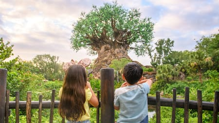Two young children looking out at the Tree of Life in Disney's Animal Kingdom park