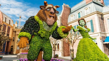 Topiaries of Beauty and the Beast are displayed at the France Pavilion at Epcot