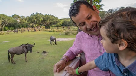 A young boy and his father riding past 2 wildebeest at Kilimanjaro Safaris
