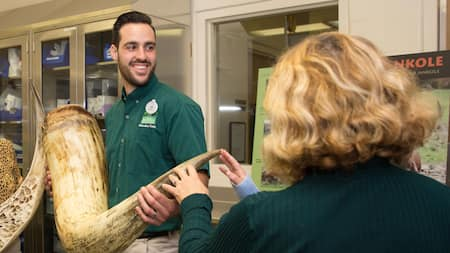 A member of Disney's Animal Kingdom park education team holds an elephant tusk for Guests to touch