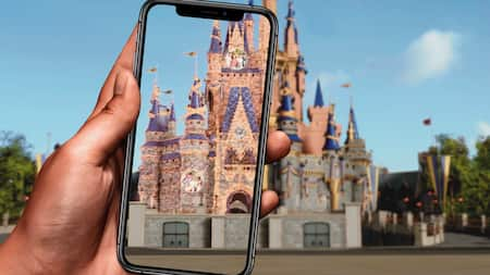 A hand holds up a mobile phone to Cinderella Castle. On the phone's screen, a mosaic of photographs is superimposed on top of the castle.