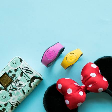 A pair of Minnie ears, a Disney wallet and 2 MagicBands