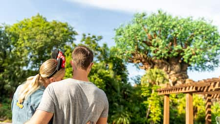 A man and woman embrace as they look at the Tree of Life at Disney's Animal Kingdom park