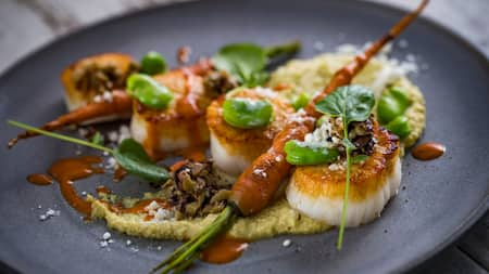 Scallops on a plate with garnish and vegetables