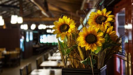 A sunflower arrangement in the dining area of Trails End Restaurant