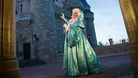 Cinderella's fairy godmother pointing toward a castle