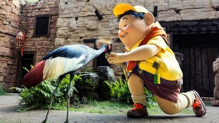 Russell, el Wilderness Explorer, se arrodilla para alimentar a una grulla