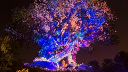 The Tree of Life illuminated at night