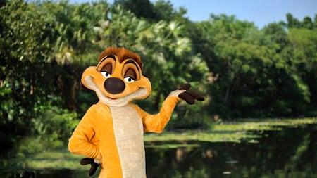 Timon from the Lion King at Disneys Animal Kingdom Park