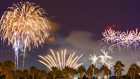 Fireworks bursting at night