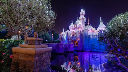 A picture of Disneyland Park