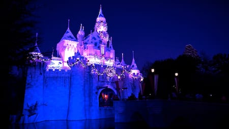 Sleeping Beauty Castle lit up with holiday lights and decorated with a garland and wreath