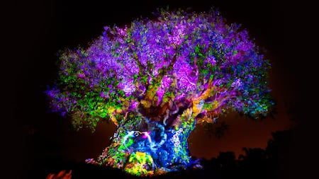 Tree of Life, a emblemática peça central do Disney's Animal Kingdom Park, iluminada durante a Tree of Life Awakenings