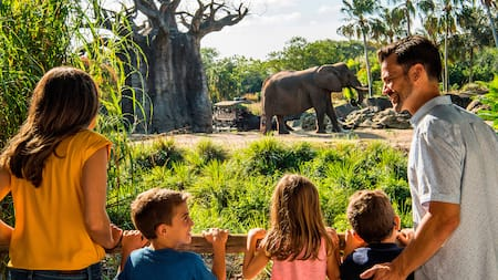 Une mère, un père et leurs 3enfants regardent un éléphant dans la savane au parc Disney's Animal Kingdom