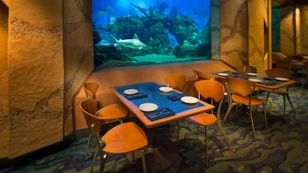 A table for 4 against a wall with a large aquarium window, with a shark swimming by