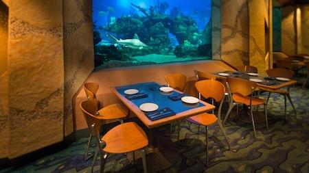 Una mesa para 4 contra una pared con una ventana grande hacia el acuario, con un tiburón nadando