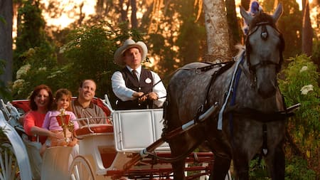 Man in cowboy hat giving a family of 3 a ride by horse and carriage