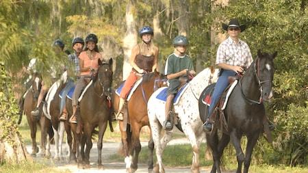 Un groupe de cavaliers sur un sentier boisé