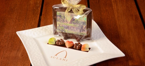 A chocolate picture postcard of Aulani is gift-wrapped on a plate with an assortment of candies.