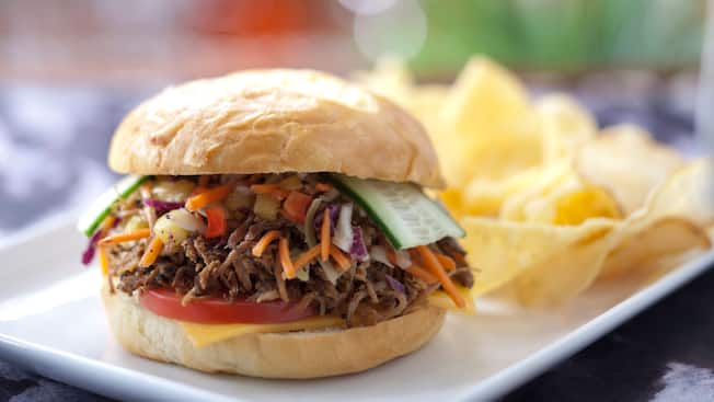 A pulled pork and slaw sandwich with a side of potato chips