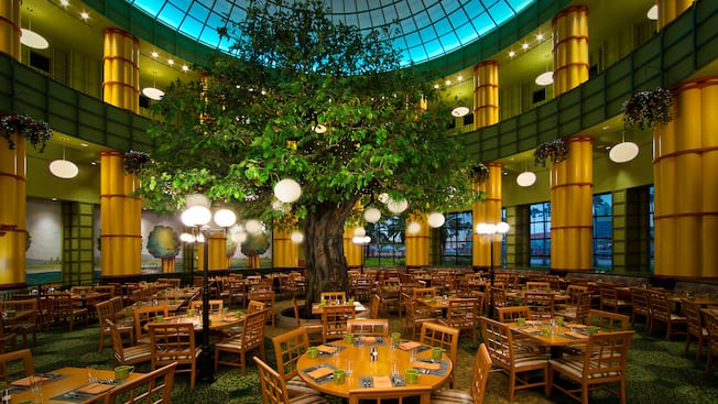 A 25-foot tall tree standing in the center of a dining room, surrounded by lights, tables and chairs