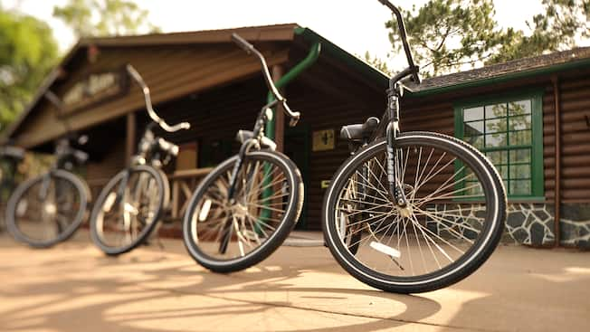 4 bicycles lined up in front of a rental shop