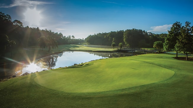 Lush greenery, palm trees and shimmering waters lead to a hole at Disney's Palm Golf Course