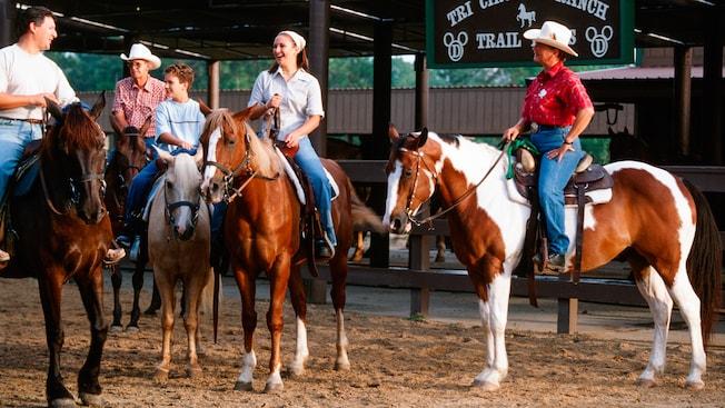 2 white horses behind a railing at Tri-Circle-D Ranch