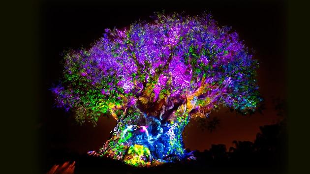カラフルにライトアップされた夜のツリー・オブ・ライフ