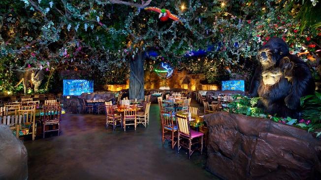 Rainforest Cafe Animal Kingdom Walt Disney World Resort