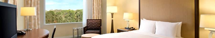 A hotel room with a king size bed, a large desk and a view of a tropical forest