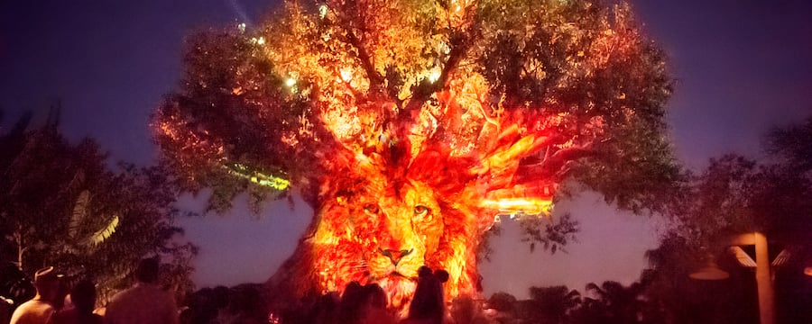 The Tree of Life has the face of a lion projected on its trunk with lights shooting from the top of the branches as a crowd watches below