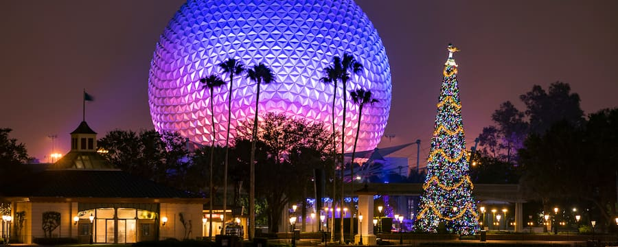 At night, a decorated Christmas tree near palm trees and the iconic symbol of Epcot, Spaceship Earth