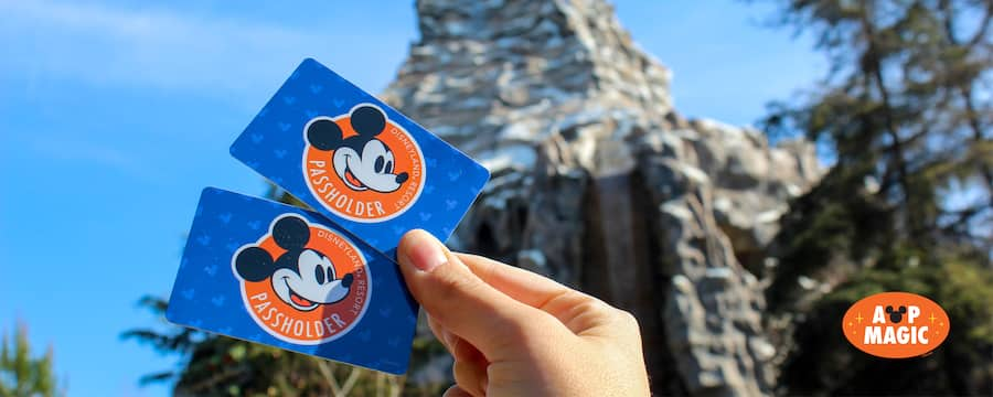 A hand holds up 2 Disneyland Resort Annual Passes near Splash Mountain and a logo features text that reads AP Magic
