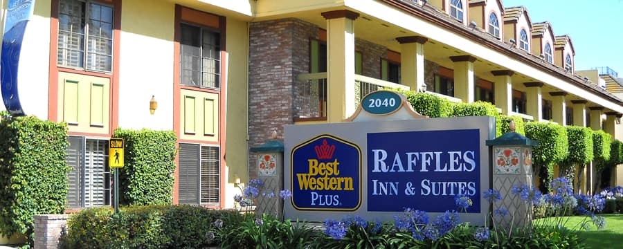 The front of Best Western Plus Raffles Inn & Suites accented with hedges and Agapanthus plants