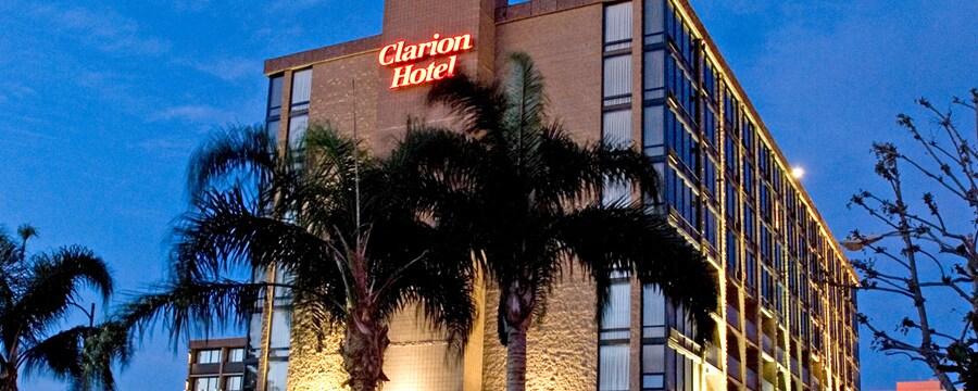 Palmeras que destacan los alrededores de Clarion Hotel Anaheim Resort, encendidas de noche