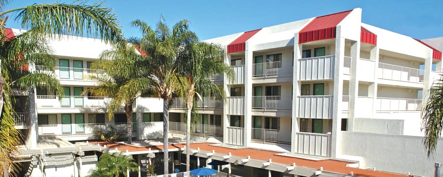 Palm trees and, beyond, the buildings at the rear of the Motel 6 Anaheim  Maingate