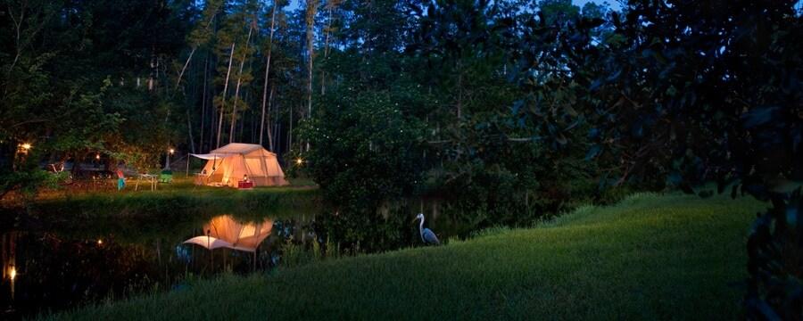 ディズニー・フォート・ウィルダネス・リゾート ‐ キャンプサイトにある夜のテント