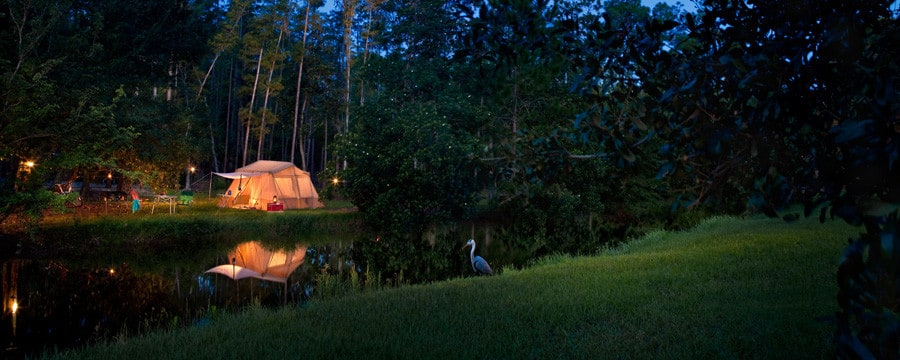 A tent by the water at The Campsites at Disney's Fort Wilderness Resort in Florida